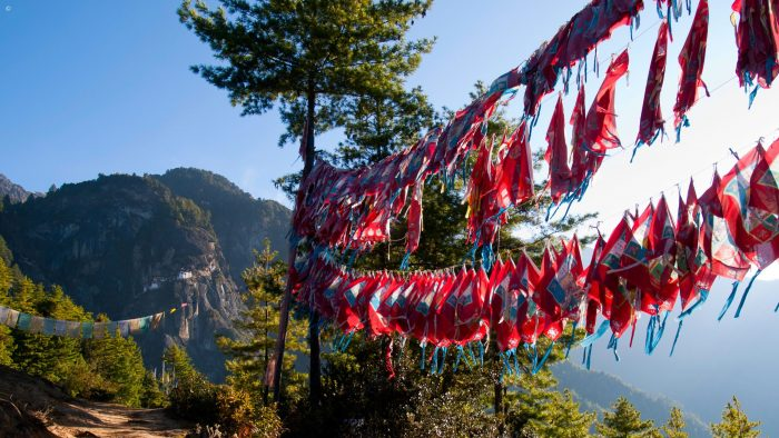 Flags at Tigers Nest