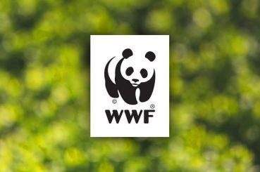Panda CLICK! to Sarawak's Rural Communities
