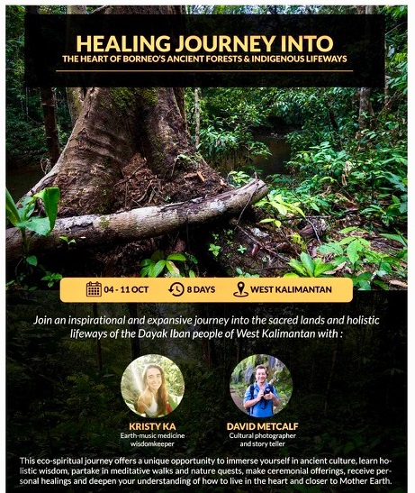 HEALING JOURNEY INTO THE HEART OF BORNEO