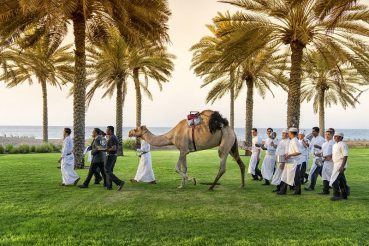 Camels lead diners through The Chedi Muscat