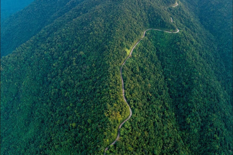 The first stage of the Coupe De Hue involves a challenging climb up the forested slopes of Bach Ma National Park
