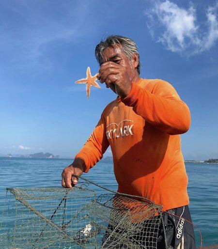 An amazing starfish