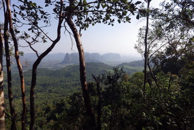 A viewpoint facing north