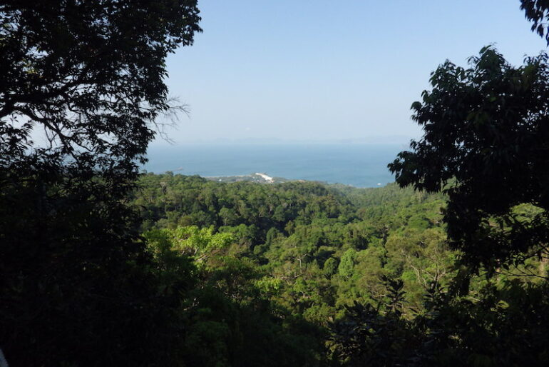 The first viewpoint