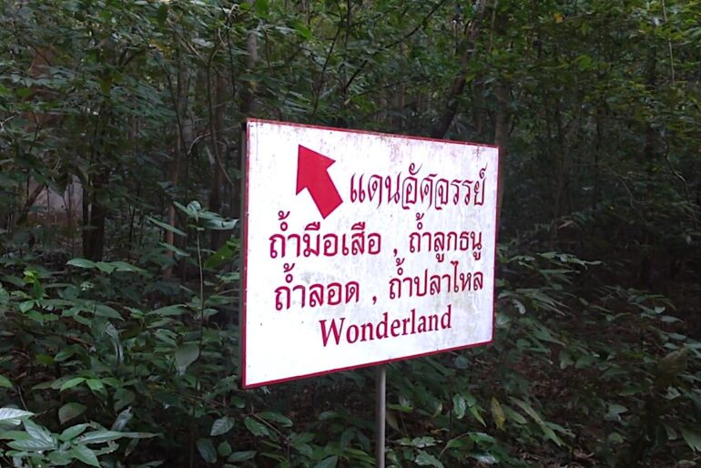 Right after entering Wonderand, the feeling is of nature